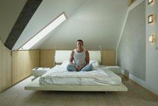 ...использования помещения под крышей принадлежит французскому...