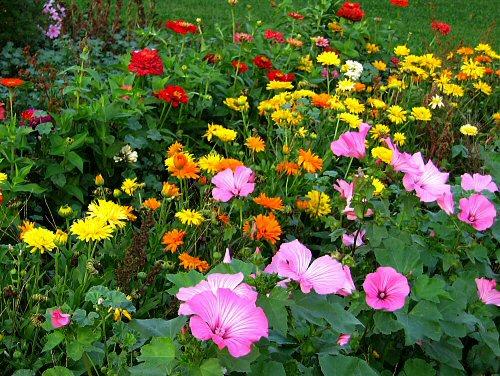 говорили, что а на україні розквітають сади поездов Калининград